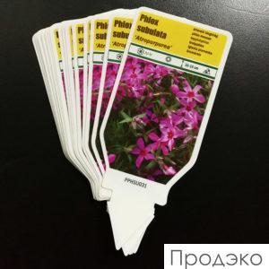 печать на бирках для растений